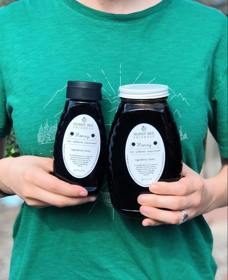 Single source Japanese Knotweed honey harvested from Centralia, Pa
