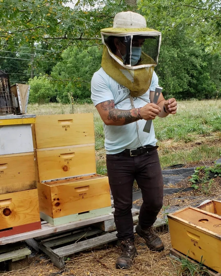 Beekeeping workshop at Dickinson Farm